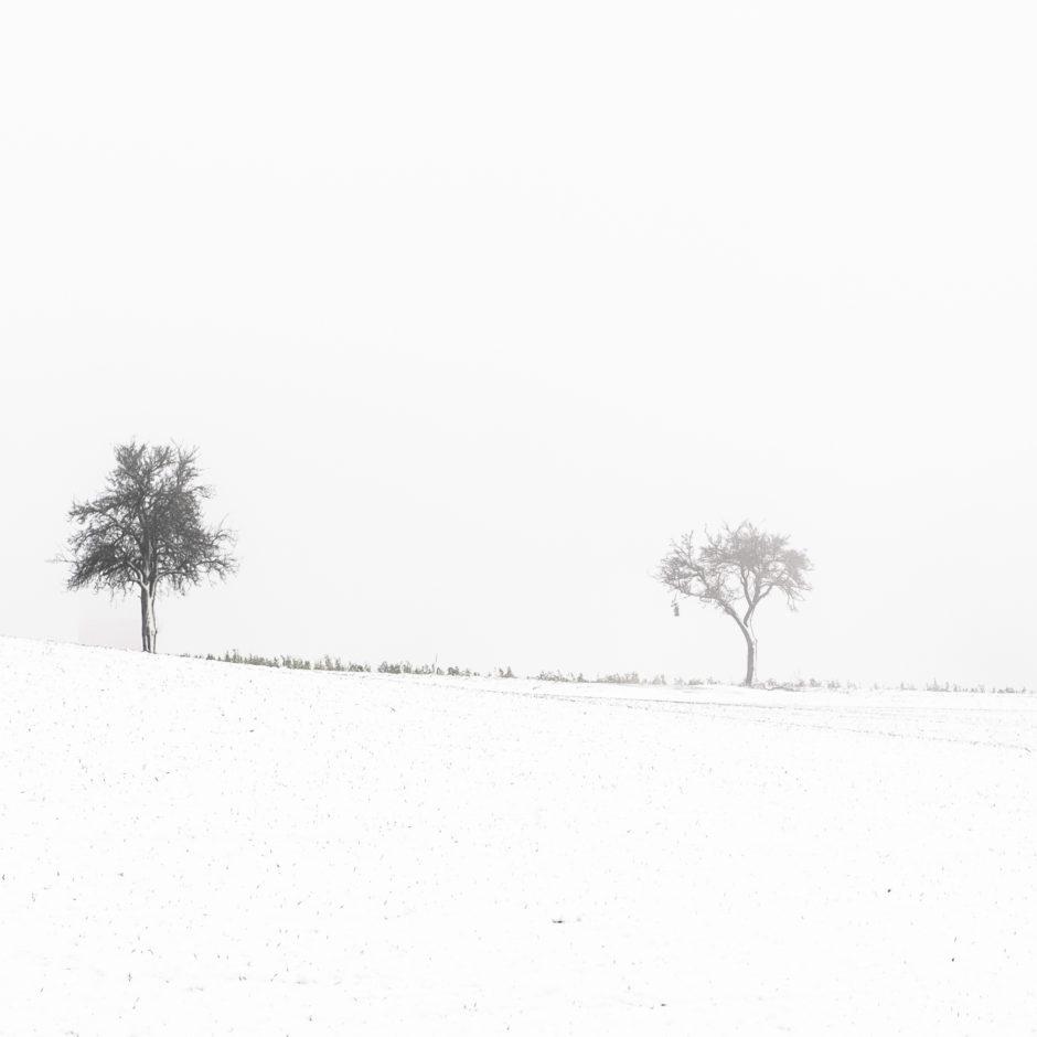 Lars Kilian: The Colour Of Snow