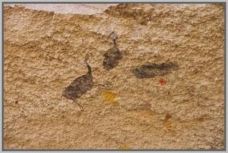 cueva-de-las-manoss32
